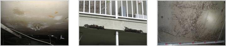漏水・遊離石灰・コンクリートの剥落・鉄筋露出・コンクリートのジャンカの写真